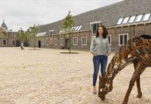 Buccaneer Delft