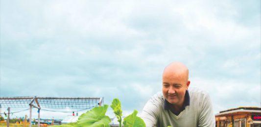 Artikel Rabobank - Tjerk Martijn Mulder